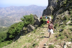 mas larcadie bergen 8